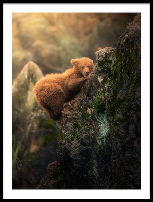 Buy this art print titled Little Climber by the artist Sergio Saavedra Ruiz