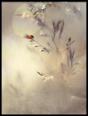 Art print titled Little Lady by the artist Heidi Westum