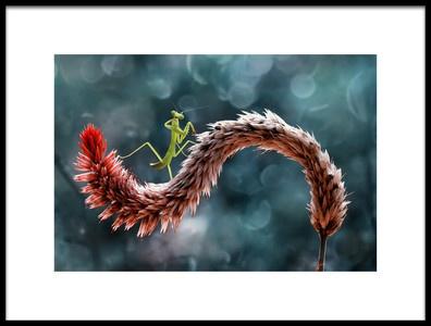 Art print titled Little Mantish by the artist Abdul Gapur Dayak