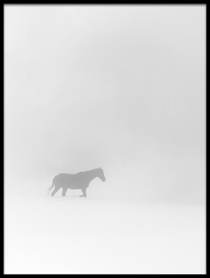 Art print titled Lone Horse by the artist Tomer Eliash