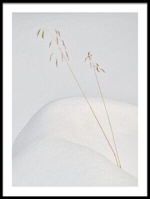 Art print titled Lonely In the Snow by the artist miquel angel artús illana
