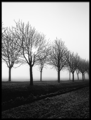 Buy this art print titled Losing Sight by the artist Christophe Staelens