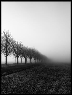 Buy this art print titled Losing Sight II by the artist Christophe Staelens