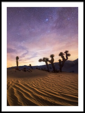Buy this art print titled Lost Souls by the artist Chris Moore