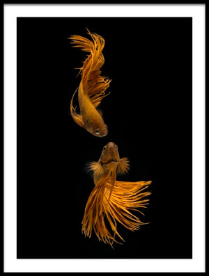 Art print titled Love Story of the Golden Fish by the artist Ganjar Rahayu