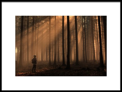 Buy this art print titled Magic Sunrise by the artist David Charouz