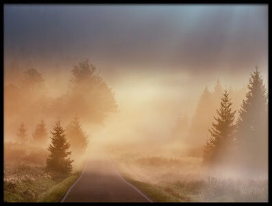 Buy this art print titled Magical Morning by the artist Martin Motl