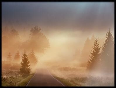 Art print titled Magical Morning by the artist Martin Motl