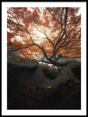 Art print titled Maple by the artist Mituke