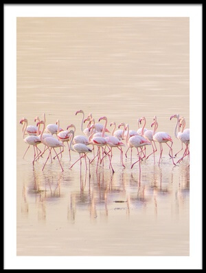 Buy this art print titled Marching Pinks by the artist Ahmed Thabet