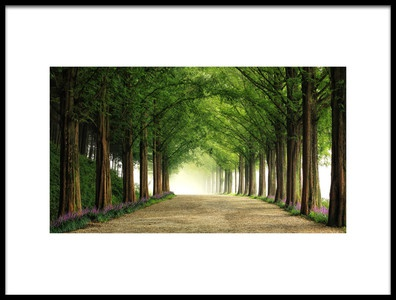 Buy this art print titled Metasequoia Road by the artist Tiger Seo