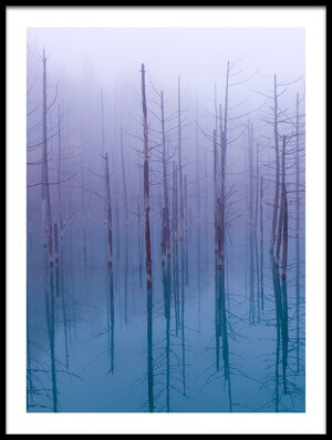Art print titled Misty Blue Pond by the artist OSAMU ASAMI