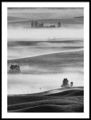 Buy this art print titled Misty Field by the artist 李从军 / Austin Li