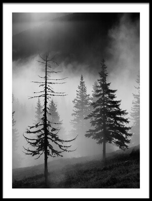 Art print titled Misty Forest by the artist Julien Oncete