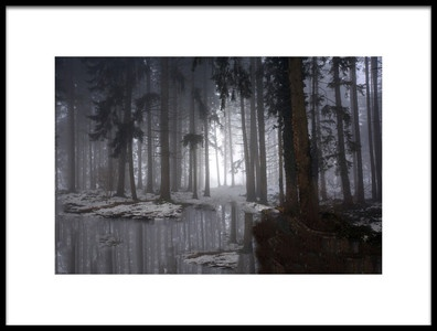 Art print titled Misty Forest Winter by the artist Michel Romaggi