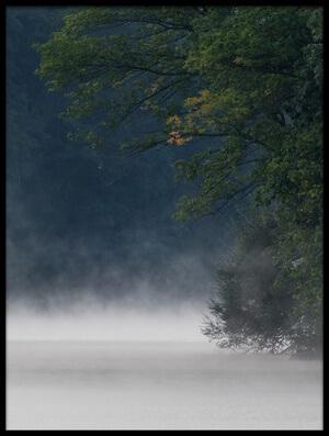 Art print titled Misty Lake #7 by the artist 李从军 / Austin Li