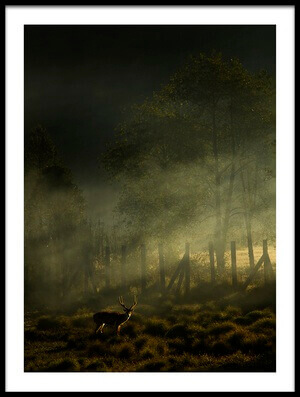 Art print titled Misty Morning by the artist Nunu Rizani