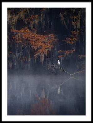 Art print titled Misty Morning by the artist Michael Zheng