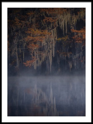 Buy this art print titled Misty Morning II by the artist Michael Zheng