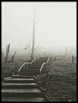 Art print titled Misty Trail by the artist Koji Sugimoto
