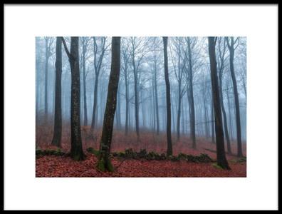 Art print titled Misty Woods by the artist Gustav Davidsson