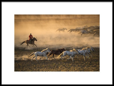 Art print titled Mongolia Horses by the artist Libby Zhang