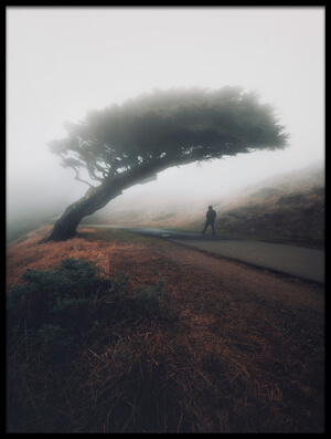 Art print titled Moody Point Reyes by the artist David George