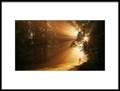 Art print titled Morning by the artist Keivan Zavari
