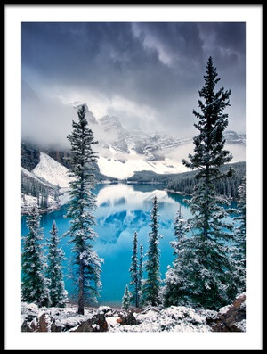 Buy this art print titled Morning Blues by the artist Trevor Cole