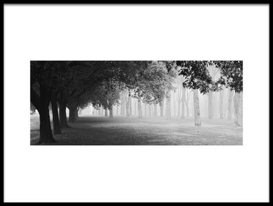 Art print titled Morning Fog by the artist Matteo Chiarello