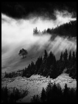 Buy this art print titled Morning Fog by the artist Marchevca Bogdan