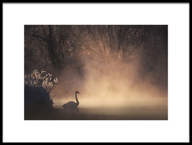 Art print titled Morning for One by the artist Dmitry Kupratsevich