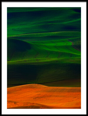 Art print titled Morning In Palouse by the artist Phillip Chang