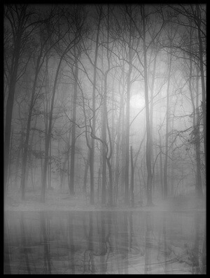 Buy this art print titled Morning Mist by the artist BethAnne Lutz