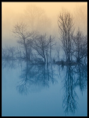 Buy this art print titled Morning Reflection by the artist David Butali