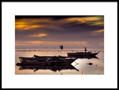 Art print titled Morning Search by the artist razvan teodoreanu