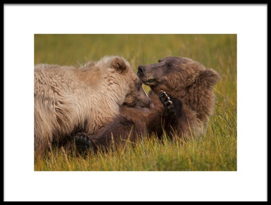 Art print titled Mother and Cub by the artist Alfred Forns