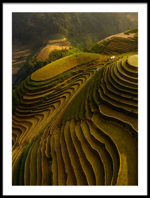 Buy this art print titled Mu Cang Chai - Vietnam by the artist Đào Tấn Phát