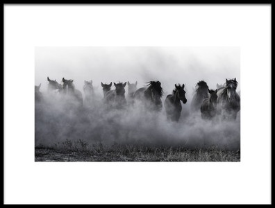 Buy this art print titled Mustangs by the artist Yavuz Pancareken