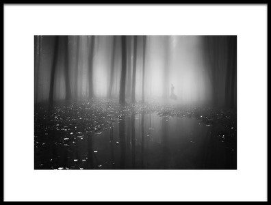 Buy this art print titled Mysterious Forest by the artist baijin