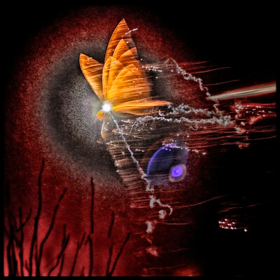 Art print titled New Year Butterfly by the artist Bjørn A Hveding