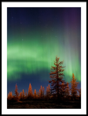 Buy this art print titled Northern Lights by the artist Andrey Snegirev