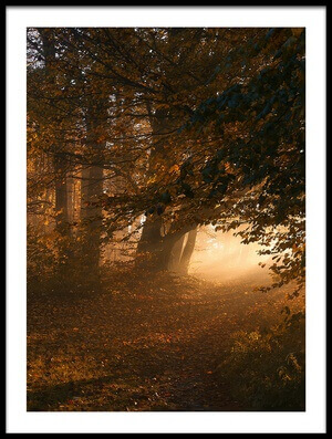 Buy this art print titled October by the artist Norbert Maier