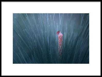 Art print titled On the Top by the artist Edy Pamungkas