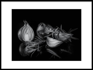 Art print titled Onion by the artist Britt Vienonen