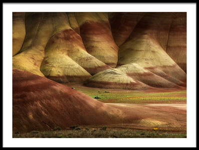 Buy this art print titled Painted Hills In Spring by the artist Shenshen Dou