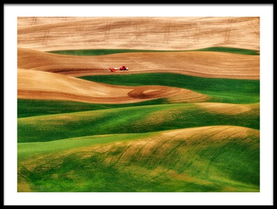 Art print titled Painter of the Land by the artist Lydia Jacobs