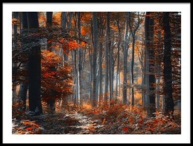 Buy this art print titled Painting Forest by the artist Ildiko Neer