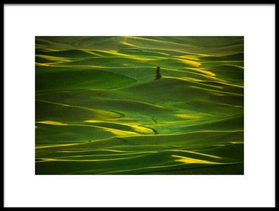 Art print titled Palouse5 by the artist April Xie