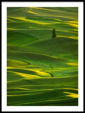 Buy this art print titled Palouse_5 by the artist April Xie